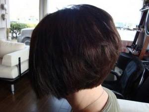Back View Of Dark Bob Haircuts
