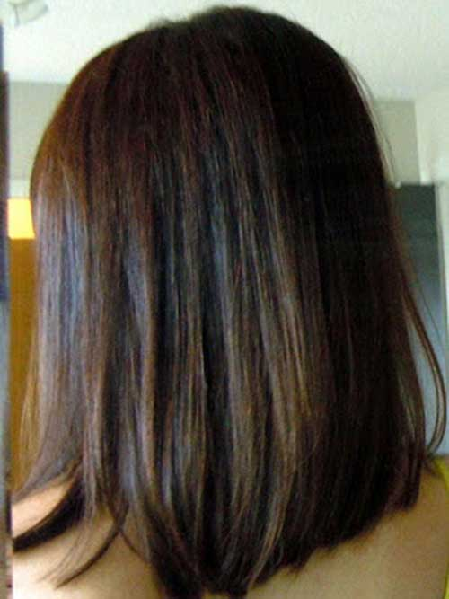 Dark Brown Straight Bob Back View