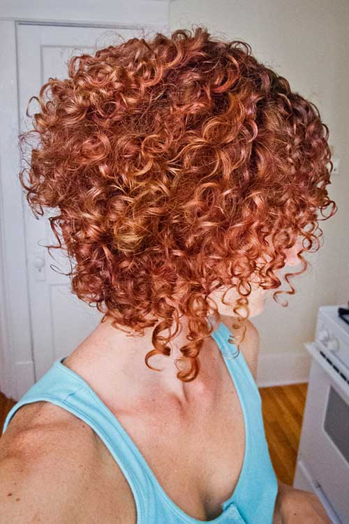 Thick Curly Inverted Bob Styles